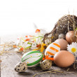 Colorful easter eggs — Stock Photo #22007977