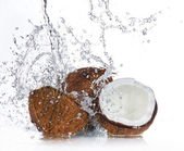 Gebarsten kokosnoot — Stockfoto