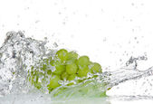 Grapes with water splash — Stock Photo