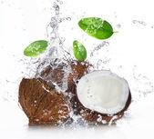 Cracked coconut with splashing water — Stock Photo
