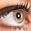 Stock Photo: Beautiful Eye