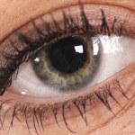 Eye of Woman — Stock Photo #24327729
