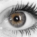 Eye of Woman — Stock Photo #24327853