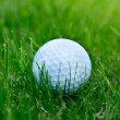Golf ball — Stock Photo #26866211