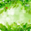Stock Photo: Fresh green leaves
