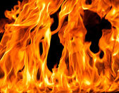 Fire flame background — Stock Photo