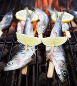 魚のグリル — ストック写真