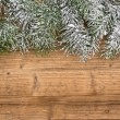 Stock Photo: Christmas fir tree