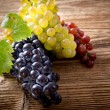 Wine grapes on vine branch — Stock Photo #35143105