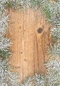 Vánoční strom jedle — Stock fotografie