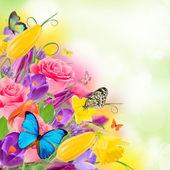 Piękny bukiet kwiatów. — Zdjęcie stockowe