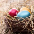 Easter colored eggs on hay — Stock Photo #42851765