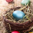 Easter colored eggs on hay — Stock Photo #42857197