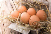 Fowl eggs in paper basket — Stockfoto