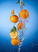 Oranges with water splash — Stock Photo