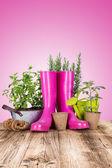 Garden tools on wooden table — Stock Photo