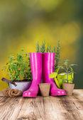 Zahradní nářadí na dřevěný stůl — Stock fotografie