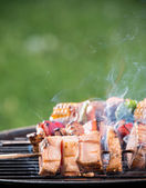 Delicious skewers on grill — Stock Photo