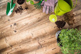 Garden tools on wooden table. — Stockfoto