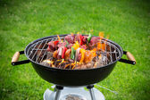 Tasty skewers on garden grill — Stock Photo