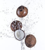 Cracked coconuts with water splash — Stock Photo
