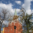 Moscow Kremlin view from Alexandrovsky garden — Stock Photo #16792363