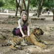 Tourist girl and Tiger — Stock Photo