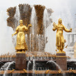 Golden Fountain The Friendship of Nations — Stok fotoğraf