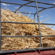 Hay in truck — Stock Photo #32847281