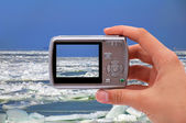 Photographing ice sea — Stockfoto