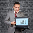 Businessman with a laptop — Stock Photo #20218975