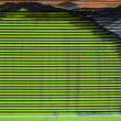 Abstract horizontal stripes of green. Ventilation grille painted graffiti close-up. — Stock Photo #13406671
