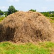 Haystack — Stock Photo #27455875