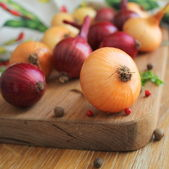 Red and yellow onions on the cutting board — Stok fotoğraf