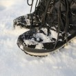 Stock Photo: Winter Boots On Snow