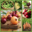 Collage with fresh natural vegetables — Stock Photo