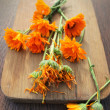 Fresh and dried herbal calendula flowers  — Stock Photo