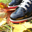 Autumn background- two boots and leaves — Стоковая фотография