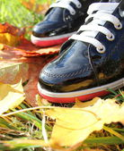 Autumn background- two boots and leaves — Stock Photo