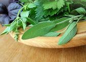 Fresh herbs on cutting board — Stock Photo