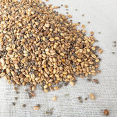 Ground wheat and hemp over bagging. Armenian traditional roasted wheat. — Stock Photo
