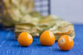 (Physalis alkekengi) winter cherry — Stock Photo