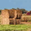 Haystack — Stock Photo #27308695