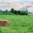 Haystack — Stock Photo #27752487