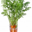 Carrots with leaves standing in a glass of water. — Stock Photo