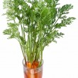 Stock Photo: Carrots with leaves standing in glass of water.