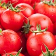 Multitude of ripe tomatoes - Stock Photo