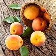 Apricots with leaves - Stock Photo