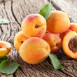 Apricots with leaves - Stock fotografie