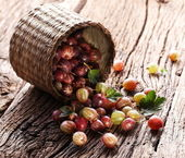 Gooseberries have dropped from the basket — Stock Photo